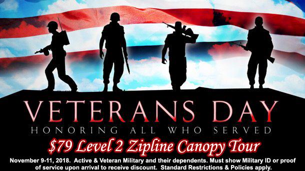 2018 Veterans Day $79 level 2